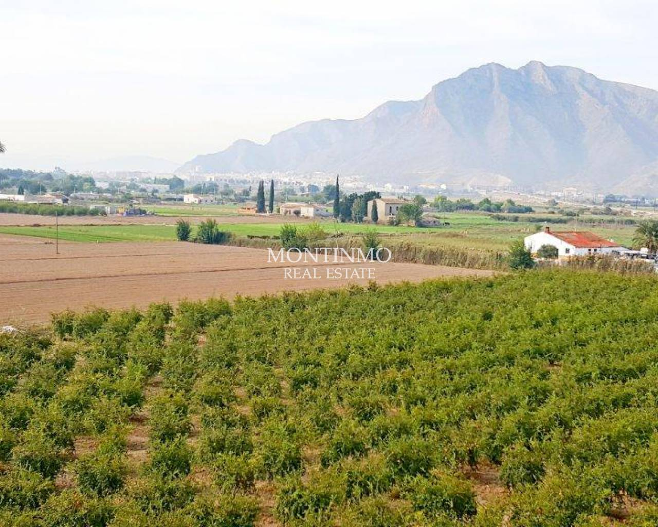 Venta - Country Land - Callosa de Segura